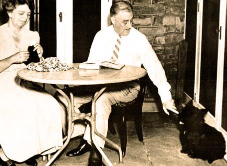 Dog Days Of War – Dog Days Of Summer – July 31, 1940