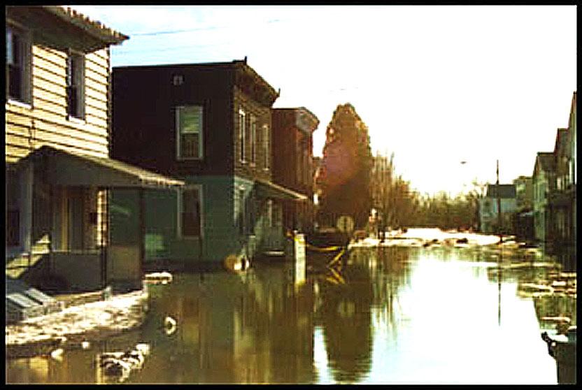 Frozen Versus Soggy – Roe Versus Wade – January 22, 1996