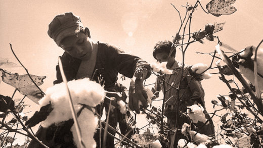 Migrant Children picking cotton