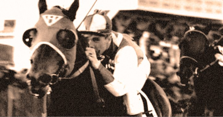 The Tragedy Of Ruffian – 1975 – Past Daily Playbook